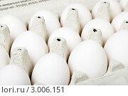 Купить «Куриные яйца в кассете», эксклюзивное фото № 3006151, снято 28 ноября 2011 г. (c) Александр Щепин / Фотобанк Лори