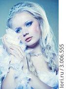 Купить «Портрет молодой блондинки в макияже Снежной Королевы», фото № 3006555, снято 6 ноября 2011 г. (c) Вероника Галкина / Фотобанк Лори