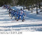Купить «Чемпионат России по лыжным гонкам», фото № 3011239, снято 12 апреля 2009 г. (c) Кузнецов Дмитрий / Фотобанк Лори