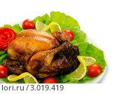 Купить «Жареная индейка с овощами и зеленью на белом фоне», фото № 3019419, снято 20 августа 2011 г. (c) Elnur / Фотобанк Лори