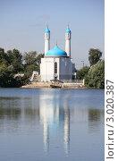 Мечеть, Казань (2011 год). Стоковое фото, фотограф Фаттахова Айгуль / Фотобанк Лори