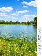 Летний пейзаж с озером. Стоковое фото, фотограф Петр Малышев / Фотобанк Лори
