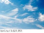 Лёгкие белые облака на фоне голубого неба. Стоковое фото, фотограф Владимир Николаевич Гневушев / Фотобанк Лори