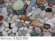 Фон из разноцветной гальки. Стоковое фото, фотограф Жданов Владислав Петрович / Фотобанк Лори