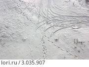 Следы автомобиля, людей и животных на снегу, фото № 3035907, снято 24 сентября 2017 г. (c) Ершова Дора Владимировна / Фотобанк Лори