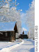 Купить «Зимний пейзаж, русская деревня», фото № 3039403, снято 24 января 2007 г. (c) ElenArt / Фотобанк Лори