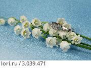 Купить «Элегантное кольцо из белого золота с бриллиантами и лесной ландыш», фото № 3039471, снято 27 мая 2011 г. (c) ElenArt / Фотобанк Лори
