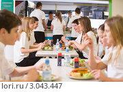 Купить «Ученики в школьной столовой на перемене», фото № 3043447, снято 13 февраля 2007 г. (c) Monkey Business Images / Фотобанк Лори