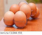 Купить «Контейнер с куриными яйцами», эксклюзивное фото № 3044159, снято 29 ноября 2011 г. (c) Игорь Низов / Фотобанк Лори