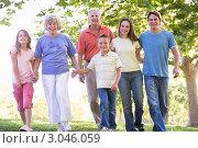 Купить «Большая семья гуляет в парке, держась за руки», фото № 3046059, снято 26 февраля 2000 г. (c) Monkey Business Images / Фотобанк Лори