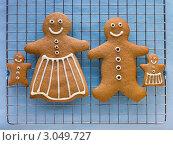 Купить «Семья из имбирного печенья», фото № 3049727, снято 2 ноября 2007 г. (c) Monkey Business Images / Фотобанк Лори