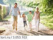 Купить «Радостная семья бежит летом по дороге, держась за руки», фото № 3053103, снято 3 мая 2007 г. (c) Monkey Business Images / Фотобанк Лори