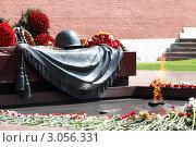 Купить «Москва, могила Неизвестного солдата у Кремлёвской стены», эксклюзивное фото № 3056331, снято 9 мая 2011 г. (c) Дмитрий Неумоин / Фотобанк Лори
