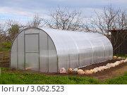 Купить «Новая теплица в весеннем саду», фото № 3062523, снято 8 мая 2011 г. (c) Яков Филимонов / Фотобанк Лори