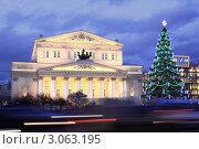 Купить «Москва. Большой Театр. Новогодняя елка», фото № 3063195, снято 19 декабря 2011 г. (c) Юрий Кирсанов / Фотобанк Лори