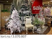 Купить «Рождественская распродажа елочных игрушек в магазине, празднично оформленный к Новому году и Рождеству. Елочные украшения», фото № 3070807, снято 19 декабря 2011 г. (c) Ольга Липунова / Фотобанк Лори