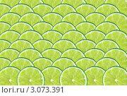 Купить «Фон из ломтиков лайма», фото № 3073391, снято 26 января 2011 г. (c) Кропотов Лев / Фотобанк Лори