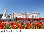Купить «Букингемский дворец и сад королевы, Лондон, Англия», фото № 3074835, снято 17 июля 2006 г. (c) Monkey Business Images / Фотобанк Лори