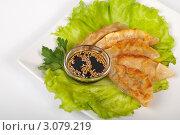 Купить «Традиционные японские гедза», фото № 3079219, снято 15 декабря 2011 г. (c) Олег Кириллов / Фотобанк Лори
