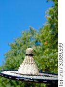 Воланчик для бадминтона. Стоковое фото, фотограф Sviatoslav Homiakov / Фотобанк Лори