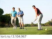 Купить «Портрет мужчин, играющих в гольф», фото № 3104967, снято 30 августа 2010 г. (c) Monkey Business Images / Фотобанк Лори