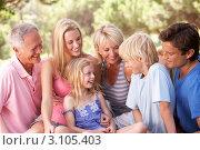 Купить «Семья с детьми, родителями, бабушкой и дедушкой в парке летом», фото № 3105403, снято 29 августа 2010 г. (c) Monkey Business Images / Фотобанк Лори