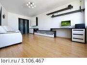 Купить «Гостиная с черно-белой мебелью в стиле минимализм», фото № 3106467, снято 1 июля 2010 г. (c) Николай Охитин / Фотобанк Лори