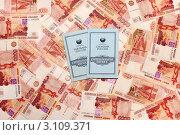 Купить «Деньги и сберегательные книжки», эксклюзивное фото № 3109371, снято 28 мая 2020 г. (c) Юрий Морозов / Фотобанк Лори