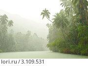 Купить «Тропический дождь над рекой», фото № 3109531, снято 16 ноября 2010 г. (c) Николай Охитин / Фотобанк Лори