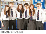 Купить «Аккуратные одноклассники в белых рубашках с галстуками стоят в библиотеке на фоне книжного шкафа», фото № 3109735, снято 19 февраля 2010 г. (c) Monkey Business Images / Фотобанк Лори