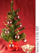 Новогодняя елка. Стоковое фото, фотограф Сергей Высоцкий / Фотобанк Лори