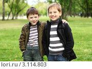 Два мальчика в летнем парке, фото № 3114803, снято 26 сентября 2017 г. (c) Sergey Nivens / Фотобанк Лори
