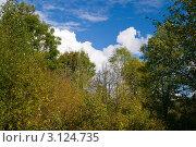 Купить «Осенний пейзаж», фото № 3124735, снято 25 сентября 2009 г. (c) Михаил Смиров / Фотобанк Лори