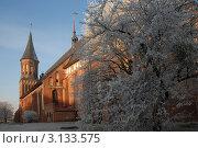 Купить «Кафедральный собор на острове. Зимний день», эксклюзивное фото № 3133575, снято 22 декабря 2011 г. (c) Svet / Фотобанк Лори