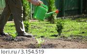 Купить «Мужчина поливает растения в саду», видеоролик № 3154519, снято 9 мая 2010 г. (c) chaoss / Фотобанк Лори