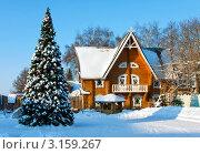Купить «Терем Снегурочки и нарядная елка в городе Костроме», фото № 3159267, снято 17 января 2012 г. (c) ElenArt / Фотобанк Лори
