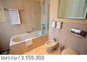 Купить «Интерьер современной ванной комнаты», фото № 3159303, снято 24 ноября 2011 г. (c) Яков Филимонов / Фотобанк Лори