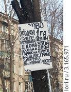 Купить «Рукописное объявление на дереве о продаже участка земли со строениями», эксклюзивное фото № 3165971, снято 20 января 2012 г. (c) Родион Власов / Фотобанк Лори