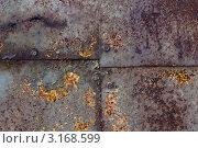 Ржавая железная панель с болтами. Стоковое фото, фотограф Каменева Лариса / Фотобанк Лори
