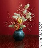 Икебана в вазе. Стоковое фото, фотограф vlntn / Фотобанк Лори