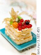 Вкусный торт с ягодами и физалисом. Стоковое фото, фотограф ElenArt / Фотобанк Лори