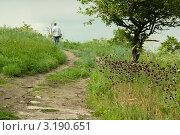 Летняя дорога. Стоковое фото, фотограф Дарья Трегубова / Фотобанк Лори