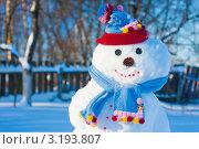 Снеговик. Стоковое фото, фотограф Майя Крученкова / Фотобанк Лори