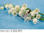 Купить «Кольцо с бриллиантами на фоне весенних цветов - лесного ландыша», фото № 3202851, снято 28 мая 2011 г. (c) ElenArt / Фотобанк Лори
