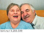 Купить «Счастливая пожилая пара», эксклюзивное фото № 3203339, снято 28 января 2012 г. (c) Куликова Вероника / Фотобанк Лори