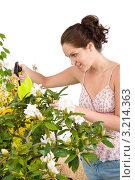 Купить «Девушка опрыскивает водой цветущий рододендрон», фото № 3214363, снято 1 мая 2010 г. (c) CandyBox Images / Фотобанк Лори