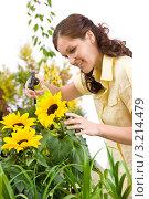 Купить «Милая девушка с пульверизатором опрыскивает растения», фото № 3214479, снято 1 мая 2010 г. (c) CandyBox Images / Фотобанк Лори