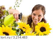 Купить «Девушка улыбается, опрыскивая подсолнухи из пульверизатора», фото № 3214483, снято 1 мая 2010 г. (c) CandyBox Images / Фотобанк Лори