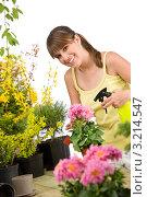 Купить «Симпатичная девушка опрыскивает цветок в горшке», фото № 3214547, снято 1 мая 2010 г. (c) CandyBox Images / Фотобанк Лори