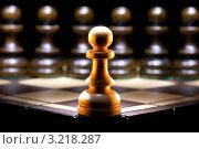 Купить «Противостояние», фото № 3218287, снято 27 августа 2011 г. (c) Руслан Гречка / Фотобанк Лори
